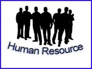 Manajemen Sumber Daya Manusia Dan Audit Msdm My World